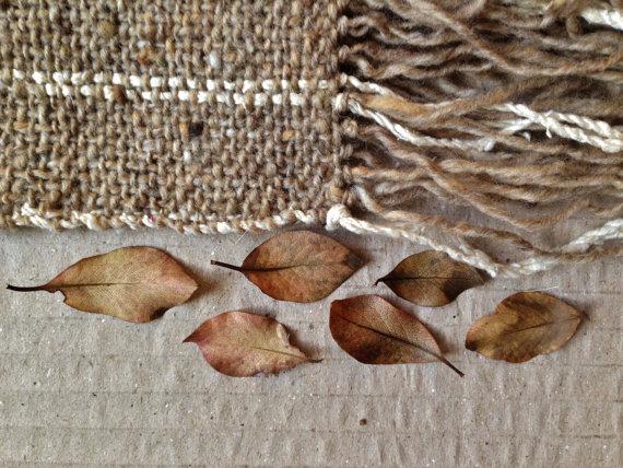 falling leaves 3